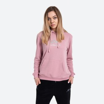 Жіноча кофта Alpha Industries New Basic Hoody Wmn Foil Print 196032FP 531
